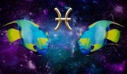 совместимость знаков зодиака онлайн