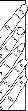 совместимость по отпечатку пальцев